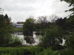 12. A quick visit to the botanical gardens.