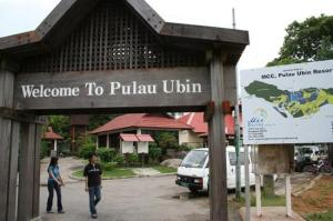 Taken from http://media-cdn.tripadvisor.com/media/photo-s/01/36/fa/69/pulau-ubin.jpg.