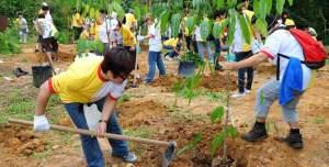 Taken from http://www.dpdhl.com/content/dam/dpdhl/presse/specials/global_volunteer_day/Bildergalerie2011/dhl_singapore_dairy_farm_668.jpg.