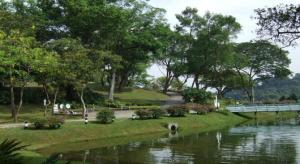 Taken from https://www.nparks.gov.sg/~/media/nparks-real-content/gardens-parks-and-nature/parks-and-nature-reserve/macritchie/venuezig-zag-point.jpg.