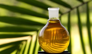 Taken from http://www.palmoilinvestigations.org/palm-oil.jpg.