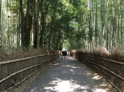 23. One of these sites is the Arashiyama Bamboo Grove, which is also connected to different trekking routes, temples, and villas. The walk through the grove takes about an hour, and when we were there in the summer there were young men offering trishaw and tour services.