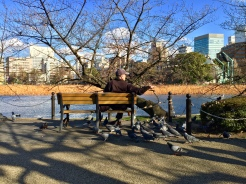 9. The Ueno Park - as the first public park of its kind in the country - houses a large number of attractions. Before the flowers were in bloom, I walked around the small pond, where there were picnic-goers, street performers, and this old man feeding pigeons.