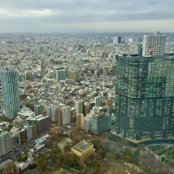 20. The Tokyo Metropolitan Government Building Observation Deck - which is near the Shinjuku Gyo-en National Garden - offers a panoramic view of the city. It is also free. I still prefer the Tokyo City View and Sky Deck, because in addition to the open Sky Deck and the more varied views, the Sky View observation deck is a lot bigger and offers many more highlights.