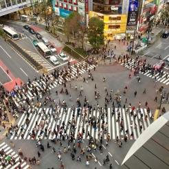 21. The Shibuya Crossing is said to be the busiest intersection in the world, and the best (an d free) view of the crossing - besides being a part of it at ground level - is available at the rooftop of Magnet by Shibuya 109. Go all the way to the rooftop for this.