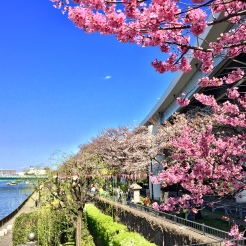 24. A short walk from the Sensō-ji is the Sumida River and the Sumida Park, en route to the Tokyo Skytree.
