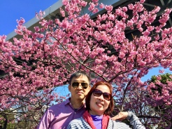 25. Parents posing in front of a cherry blossom tree alongside the Sumida River.
